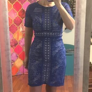 Royal blue lace fitted dress
